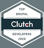 Top Drupal Developers 2020