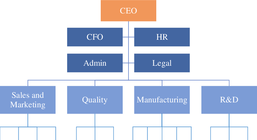 Establishing a Company Structure