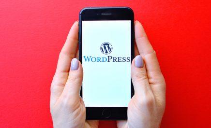 Top 9 WordPress web development tools you can't miss in 2021